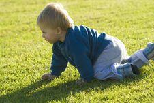 Free Baby Crawling Royalty Free Stock Photos - 15243188