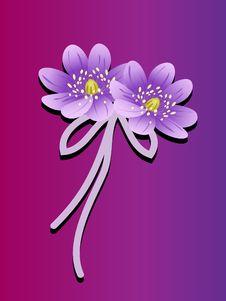 Free Lotus Flowers Royalty Free Stock Images - 15245629