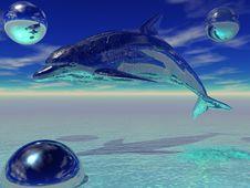 Free Metal Dolphin Stock Photo - 15246520