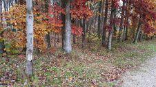 Free Oak Grove Cemetery Royalty Free Stock Photos - 152453348