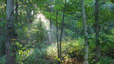 Free Rockbridge State Nature Preserve Royalty Free Stock Photo - 152453375