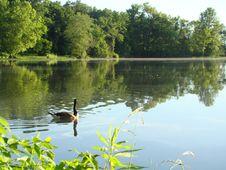 Free Three Creeks Metro Park Stock Photo - 152453400