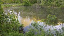 Free Oldtown Creek Preserve Stock Images - 152453454