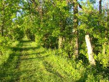 Free Aqueduct Park Stock Photo - 152453550