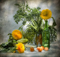 Free Still Life With Sunflowers And Cucumbers Royalty Free Stock Image - 15250496