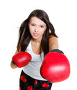 Free Young Female Boxer Stock Photo - 15251360