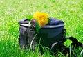 Free Photo Bag Gorizont Royalty Free Stock Photos - 15253688