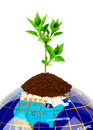 Free Globe And Plant Royalty Free Stock Image - 15258846