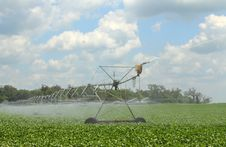 Free Irrigating A Soybean Field Royalty Free Stock Photo - 15251575