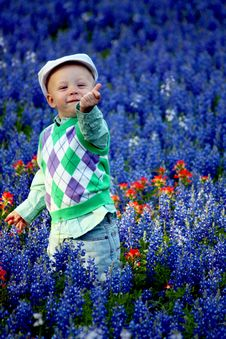 Free Happy Boy In Bluebonnets Stock Images - 15254614