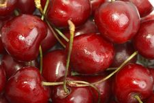 Free Sweet Cherry Stock Images - 15255294