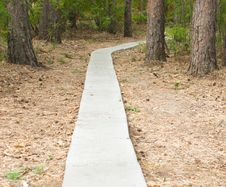 Free Footpath In Wood Stock Photos - 15255303