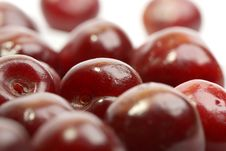 Free Sweet Cherry Royalty Free Stock Photo - 15255305