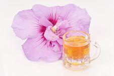 Free Sweet Taste Of Honey Stock Photos - 15255483
