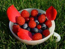 Free Blueberries And Raspberries Stock Image - 15255551