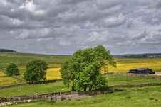 Free English Hay Meadows Stock Photo - 15255900