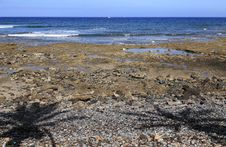 Free Coast Of Tenerife, Palya De Las Americas Royalty Free Stock Photography - 15257017