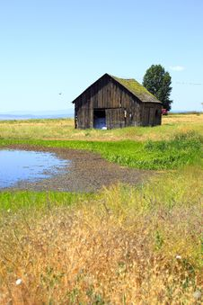 Old Shack & A Pond.