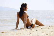 Free On The Sand... Stock Photos - 15258933
