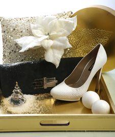 Free Shoe Stock Photography - 15259152