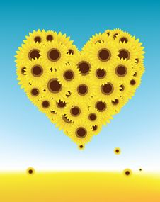 Free Sunflowers Heart Shape, Summer Field Stock Image - 15259721