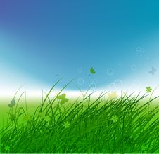 Free Green Field With Butterflies, Summer Background Stock Photos - 15259743