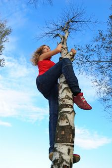 Free The Girl On A Tree Stock Photos - 15259843