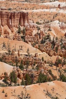 Free Bryce Canyon In Utah Royalty Free Stock Photo - 15259915