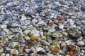 Free Sea Pebbles Stock Photos - 15263313