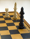 Free Checkmate Stock Photo - 15266450