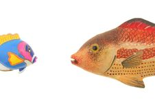 Free Two Model Fish Royalty Free Stock Images - 15261839
