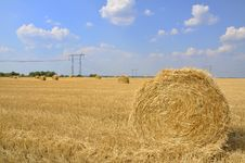 Free Hay Rolls Royalty Free Stock Photography - 15262747