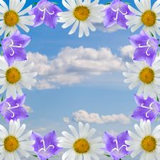 Free Frame Of Flowers Stock Images - 15263004