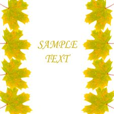 Free Frame Of Autumn Maple Leaves Royalty Free Stock Photo - 15263015