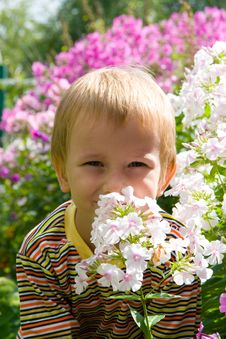 Free Happy Boy And Flowers Stock Photos - 15263593