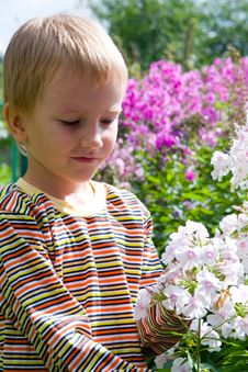 Free Happy Boy And Flowers Stock Images - 15263604
