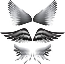 Free Wings Silhouette Stock Image - 15264101