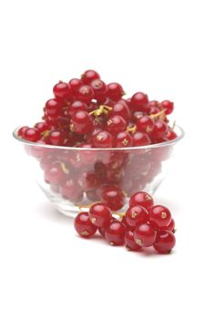 Free Red Currant Royalty Free Stock Photos - 15267298
