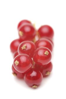 Free Red Currant Stock Images - 15267304