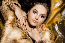 Free Woman In A Fur Coat Royalty Free Stock Photos - 15268768