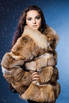 Free Woman In A Fur Coat Stock Photos - 15268833