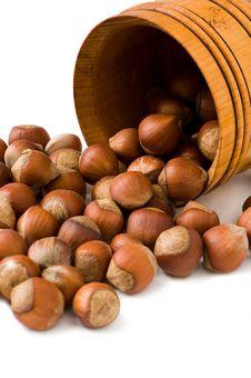 Free Many Hazelnuts Stock Photo - 15269860