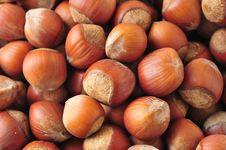 Free Hazelnuts Background Stock Images - 15269864