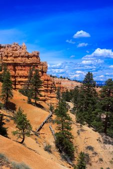 Free Bryce Canyon Rim Trail Royalty Free Stock Photo - 15269925