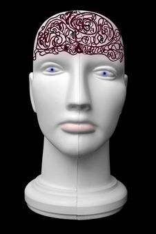 Mannequin Head With Brains Stock Photography