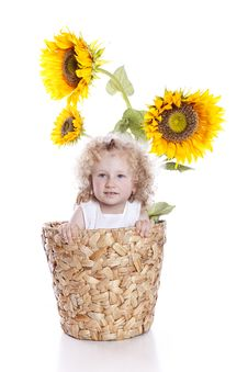 Free Baby Girl In Sunflowers Pot Stock Photography - 15272552