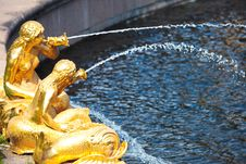 Fountains Of Petergof Royalty Free Stock Image