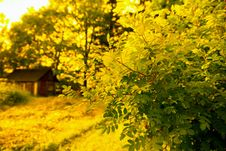 Free Autumn In Rural Area Royalty Free Stock Photography - 15274767