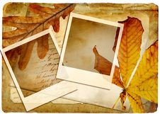 Free Autumn Background Stock Photos - 15274803