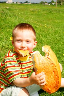 Free Bread Royalty Free Stock Photos - 15277248